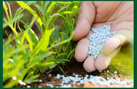 Picture for category Chemical Fertilizers